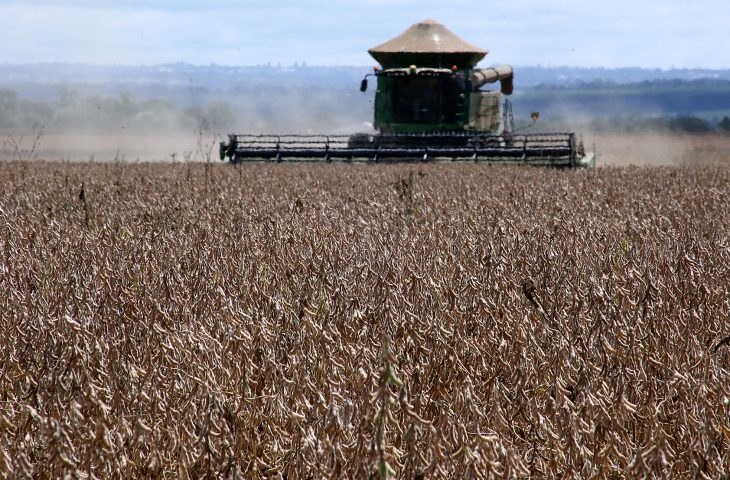 MS inicia nova safra de soja com 45% já comercializada