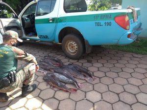 Pescado será doado