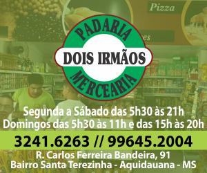 DOIS IRMAOS 300X250